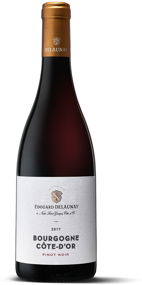 Bourgogne Côte d'Or Pinot Noir Rouge 2017